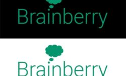 brainberry-logo